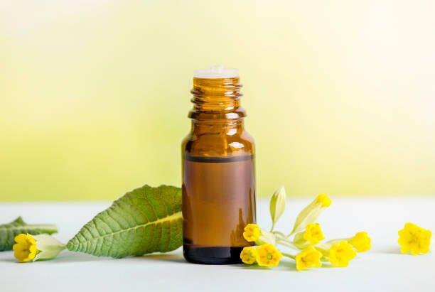 Olio di Primula: benefici per la bellezza