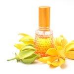 Olio di Ylang Ylang: uso e benefici per la salute