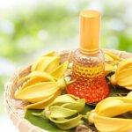 Olio essenziale di Ylang Ylang per la cura della pelle